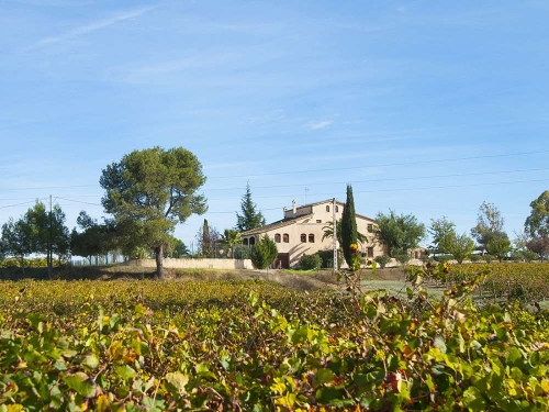 Accommodation in a villa / house celler de l'olivera 30307 to rent in subirats