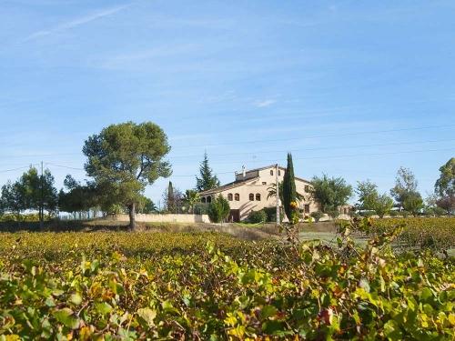 Logement dans villa / maison Celler de l'olivera 30307 à louer à Subirats