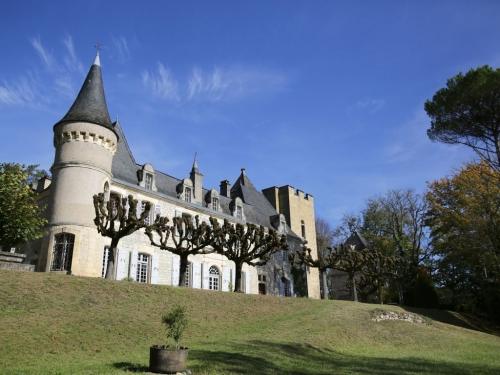 Rent chateau  france