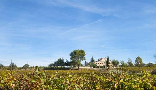 Property accommodation in a villa / house l'olivera de dalt 30305