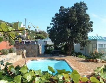 Sur de África : SACC308 - Daisy