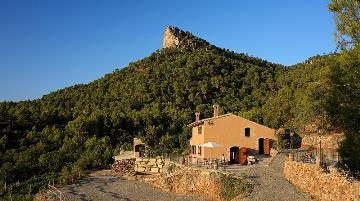 Reserve villa / house falset pr02