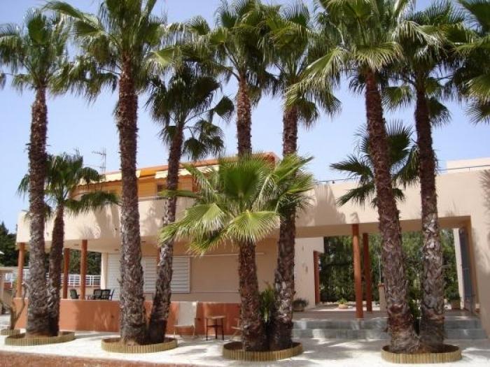 Villa / house Ibiza to rent in Sant Llorenç de Balafia