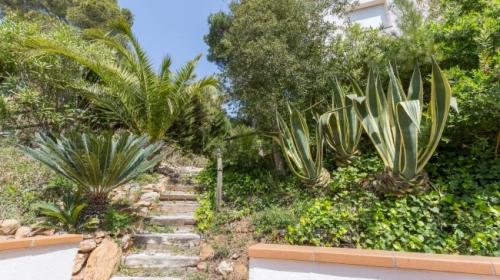 Property villa / house diaz