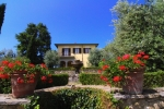 Villa / house Il poglo to rent in Monte San Savino