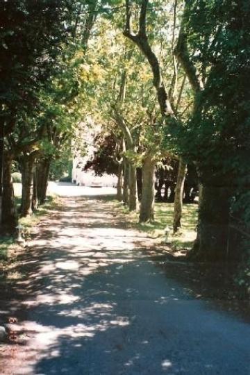 Property villa / house saint-girons