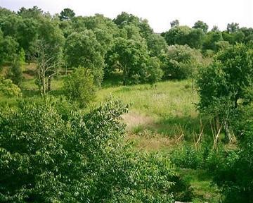 Reserve villa / house masia campo