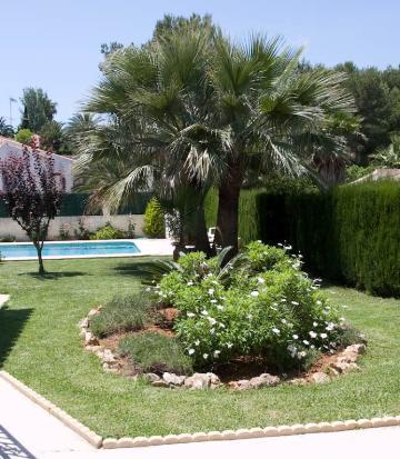 Property villa / house colomer