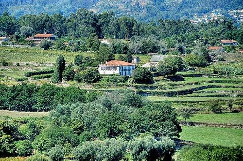 Portogallo : SPV611-VE313* - Casa frutada