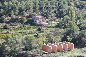Spain : CLO852* - Priorat pr03
