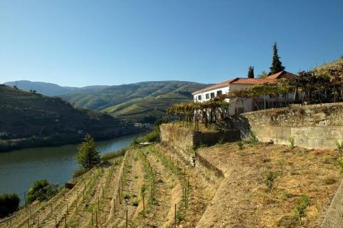 Portugal : SPV102-VE319* - Villa rose 2
