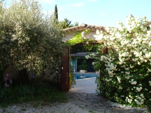 Location villa / maison vignes de provence