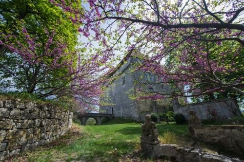 France : cha1623 - Le château médiéval