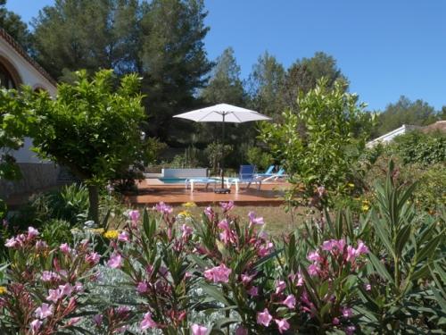 Location villa / maison pluma b steren