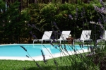 Villa / house lisbonne exotique to rent in aroeira