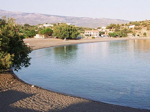 Villa / house champs d'oliviers et mer