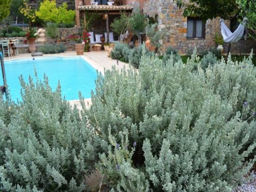 Villa / house Renard to rent in Politika
