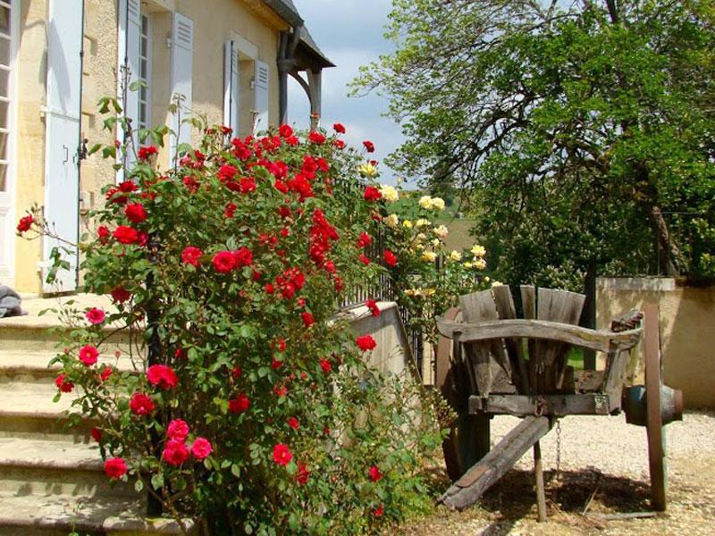 Location château chateau coeur de vignobles