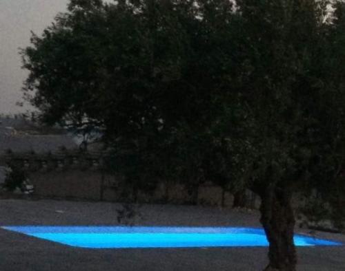 Location villa / maison olive et montagnes