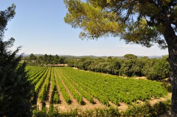 Location villa / maison proche d'aix-en-provence