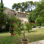 Villa / house Peypin d'aygues to rent in Peypin-d'Aigues