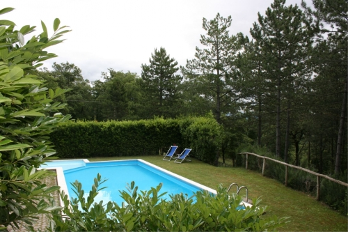 Holiday rentals view pine wood