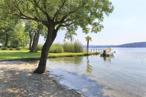 Holiday rentals view lake