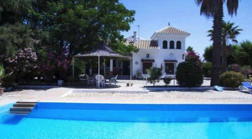 Villa in Marchena, View : Countryside