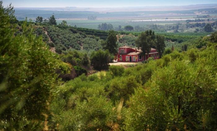 Villa / house Lagrandia to rent in Alcolea del Rio