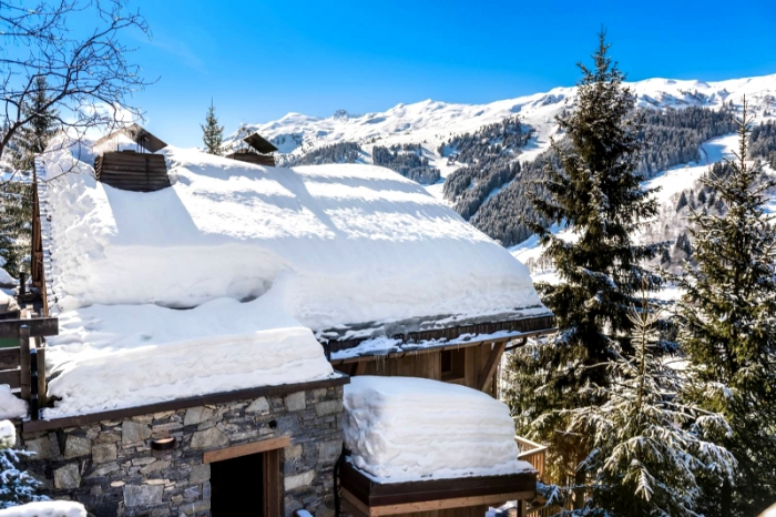 Chalet Zinner to rent in Méribel