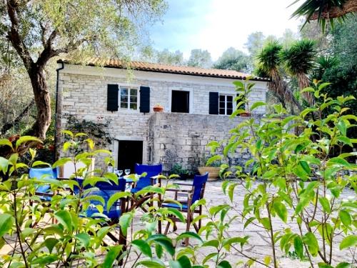 Greece : PAX801 - Vieux oliviers
