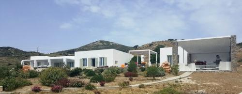 Greece : PAR1001 - ZAKINTOS