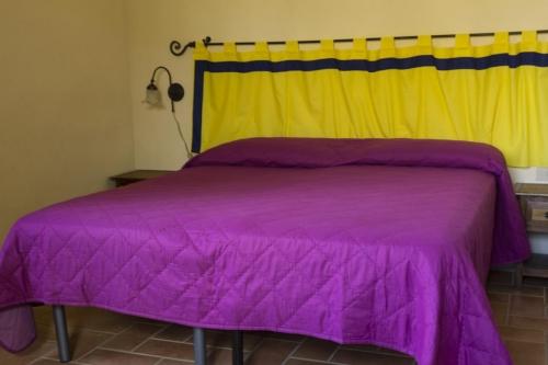 Villa / house pienza to rent in sarteano