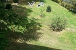 Location villa / maison mitoyenne villa monteleone