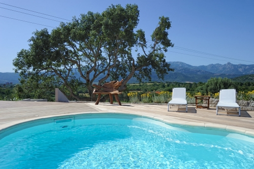 Villa / house figa to rent in figari