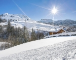 Chalet Honda to rent in Le Grand Bornand