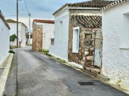 Location villa / maison daphne