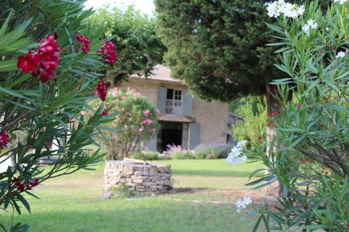 Location villa / maison villa papaye