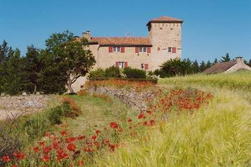 Rental chateau millau