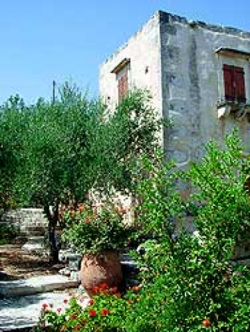 Rental independent house agapi