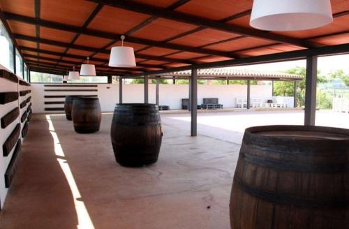 Reserve accommodation in a villa / house l'olivera gran 30303