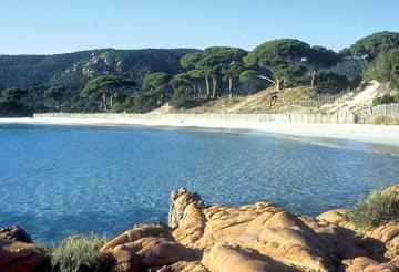 Korsika villen