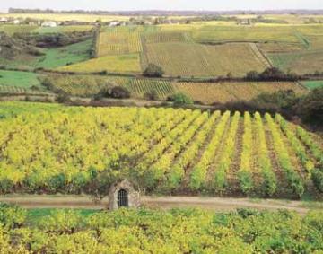 Central - Loire villas
