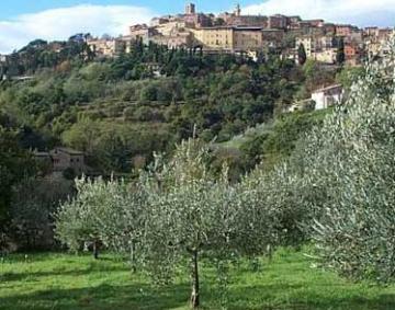 Montepulciano villas