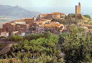Castiglion Fiorentino  villas